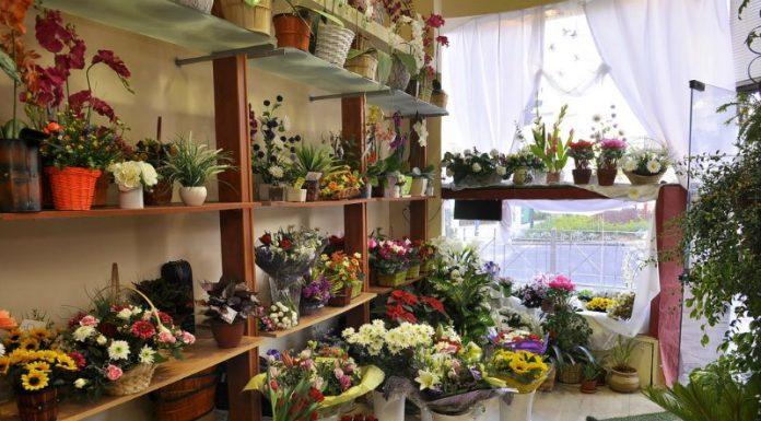 כיצד לשמר זר פרחים לאורך זמן?