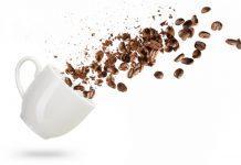 פולי קפה מומלצים
